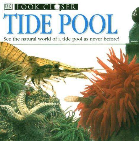 Tide Pool (Look Closer)
