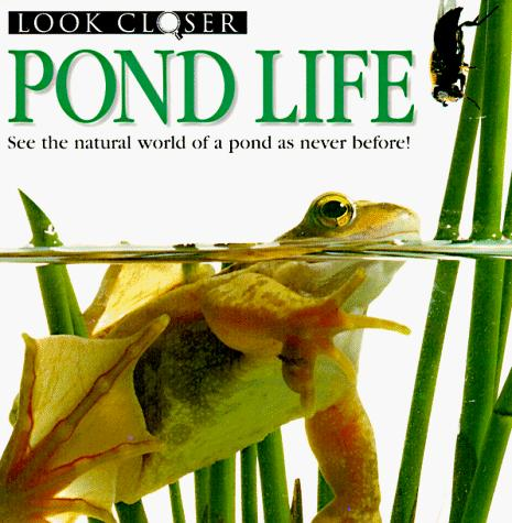 Pond Life (Look Closer) by Barbara Taylor